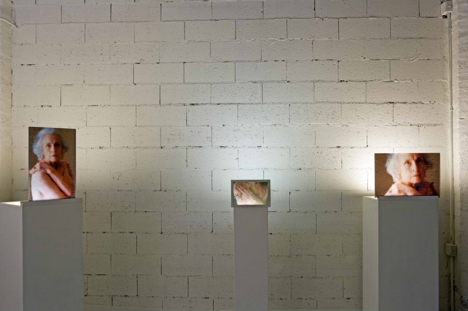 Colomba - Maggio 2012 - allestimento mostra